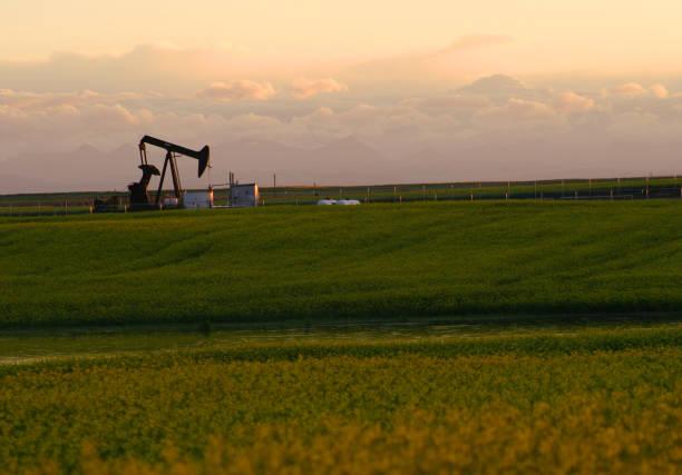 Plataforma petrolífera en el campo de hierba y el cielo nublado - foto de stock