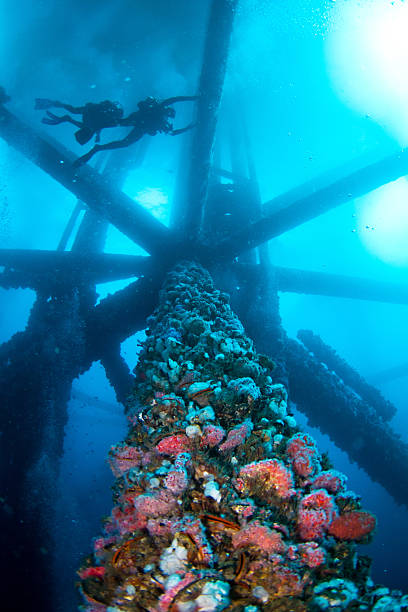oil rigs underwater with scuba divers - artificial reef stock pictures, royalty-free photos & images