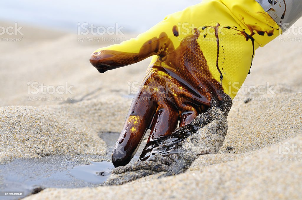 Oil Spill: Beach Clean-up royalty-free stock photo
