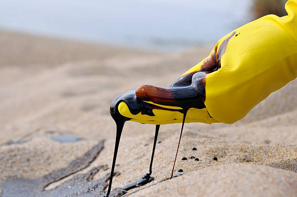 oil spill: environmental disaster - mike cherim stock pictures, royalty-free photos & images