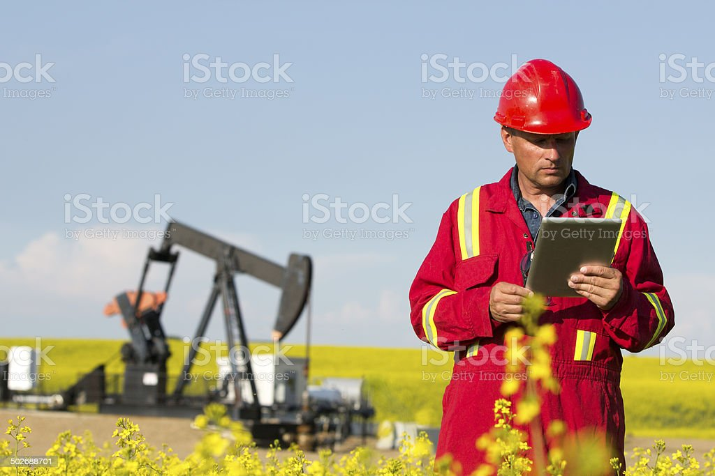 Oil Worker and Canola Field stock photo