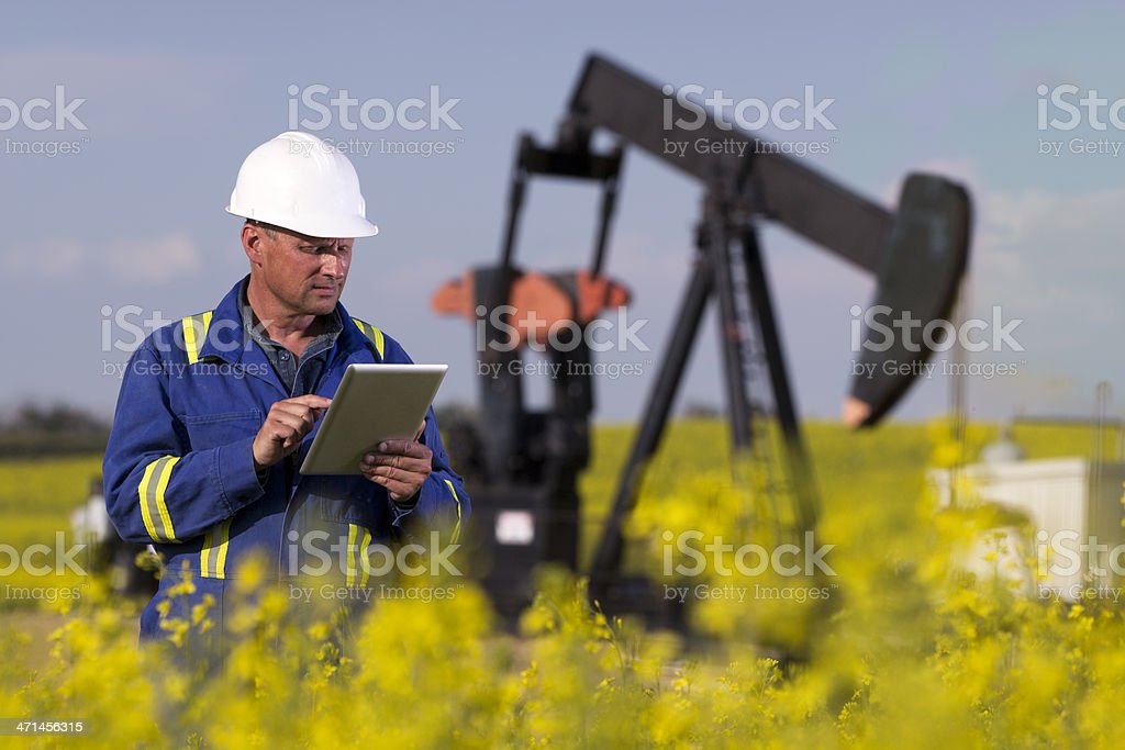 Oil Worker in Canola stock photo