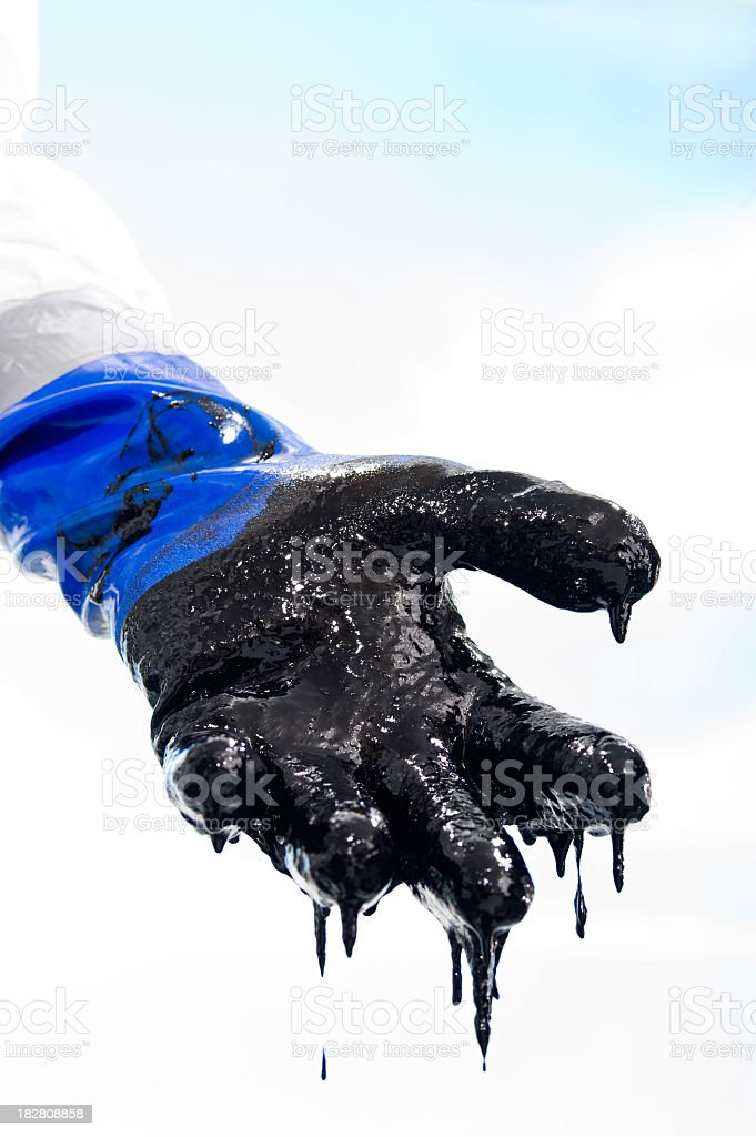 Oiled covered gloved hand during Oil spill clean up royalty-free stock photo