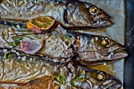 635931692 istock photo oily fish rich in antioxidants freshly cooked 637646054