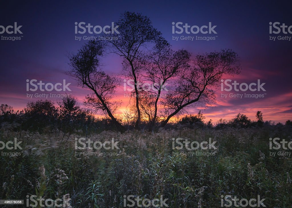 Ojibway Sunset stock photo