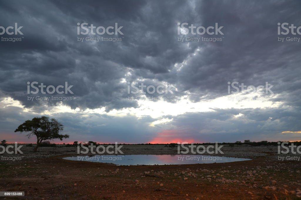 Okaukuejo waterhole in Etosha National Park stock photo