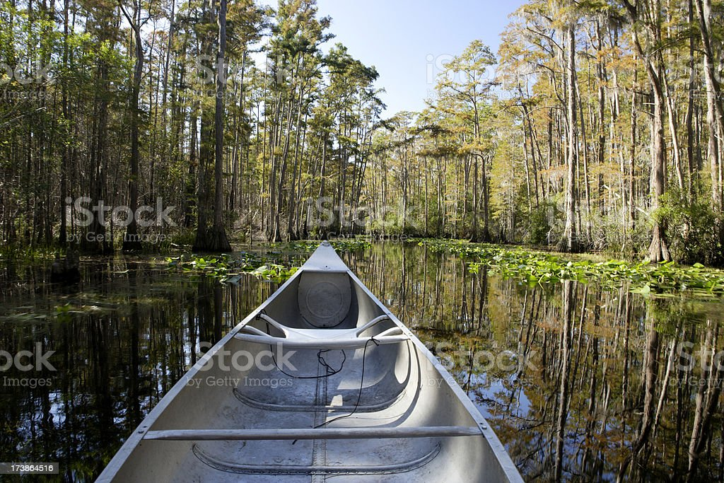 Okefenokee by Canoe stock photo