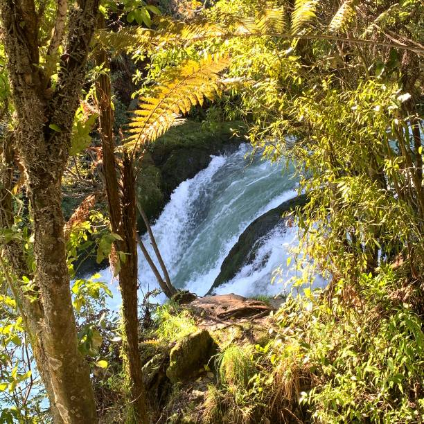 Okere Falls stock photo