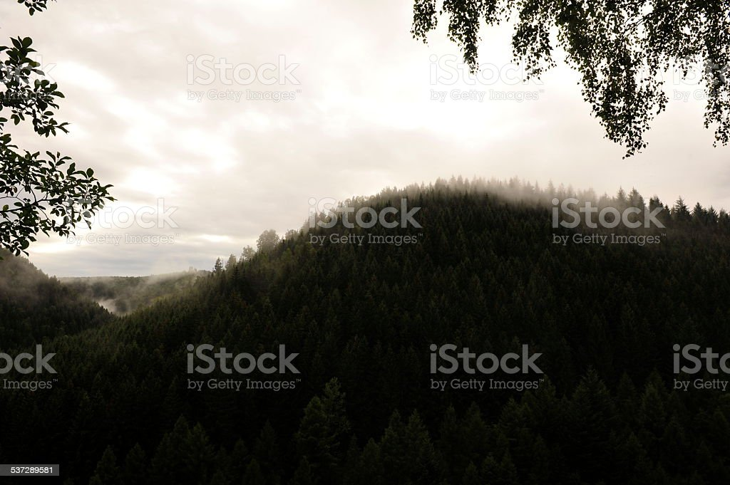 Okertal im Harz stock photo