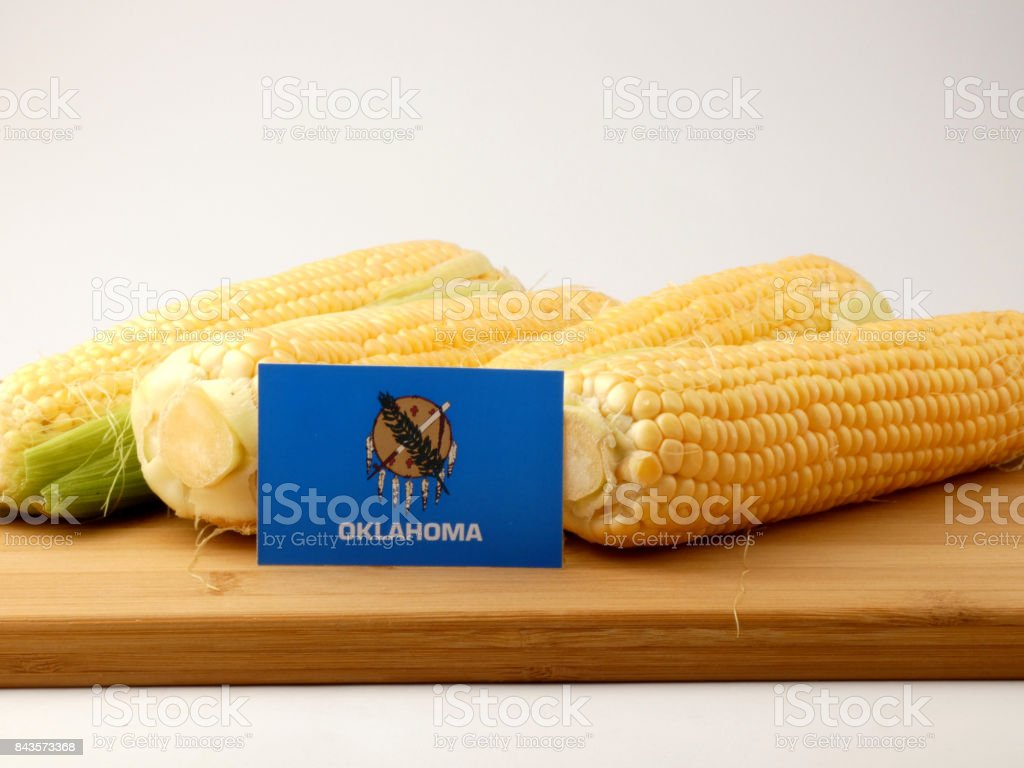 Oklahoma flag on a wooden panel with corn isolated on a white background stock photo