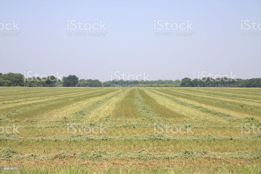 Oklahoma Hay Feild 3 royalty-free stock photo