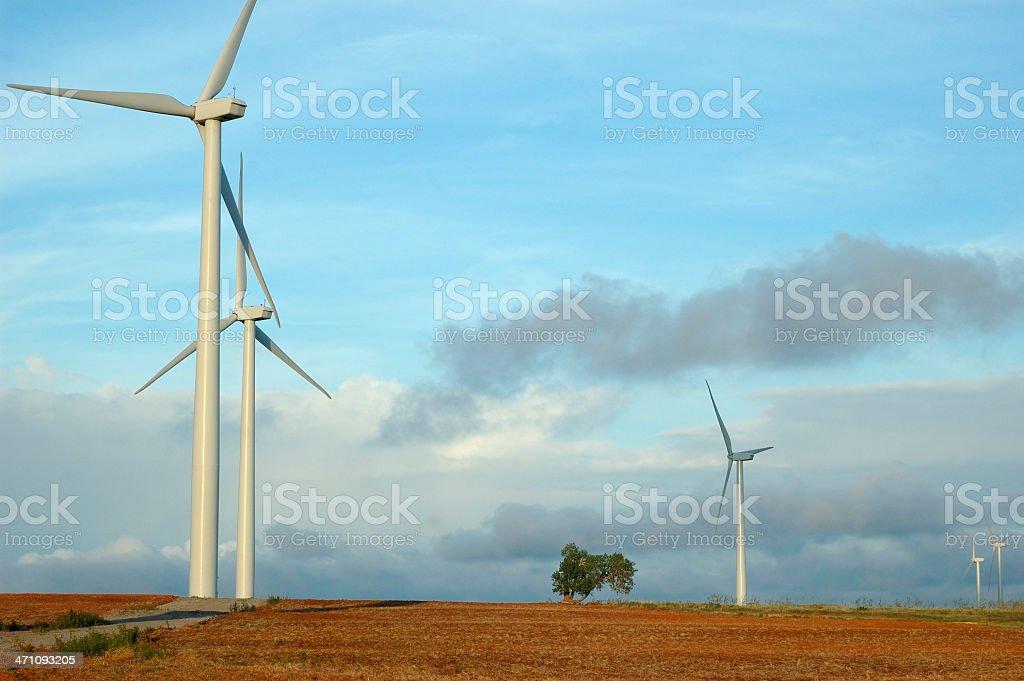 Oklahoma Wind Farm royalty-free stock photo