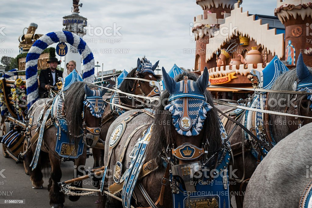 Oktoberfest Munich - Hofbraeu Horses and cart stock photo