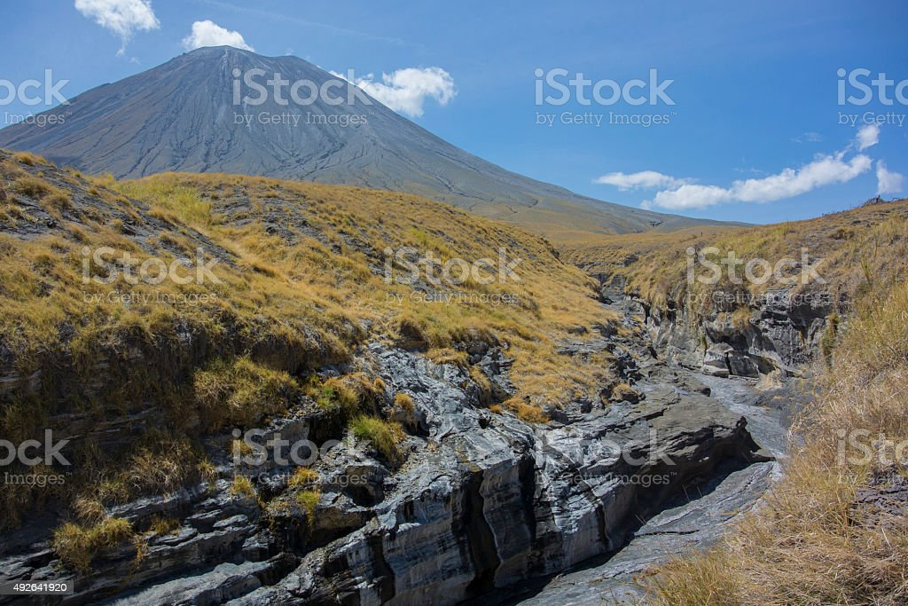 Ol Doinyo Lengai with Grass Covered Gully stock photo