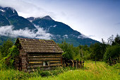 Old, abandoned cabin in an overgrown meadow, Bella Coola, BC, Canada