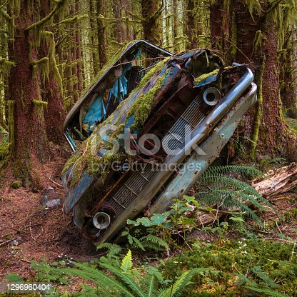 Old abandoned car covered in moss in the forest.