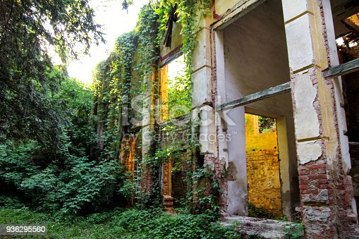 Old abandoned concrete factory structure overtaken by nature / Rusty old ruinous and abandoned building of factory, ivies are covering the walls, overtaken and destructed by nature and time.