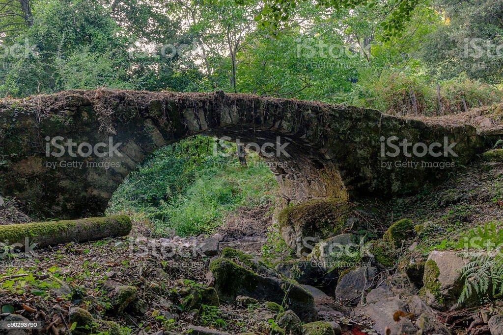 Old abandoned Genovese bridge in Corsica - 1 royaltyfri bildbanksbilder