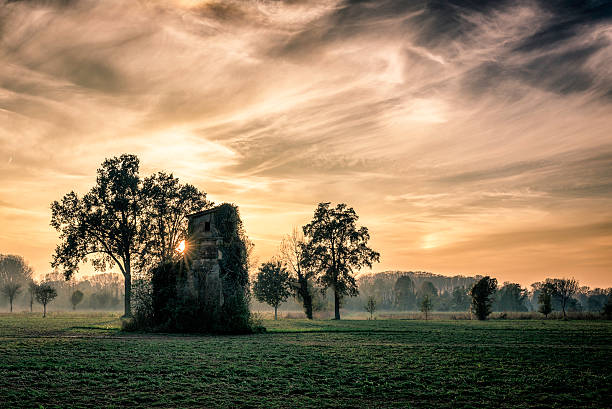 old abandoned house covered by vegetation at sunset foto