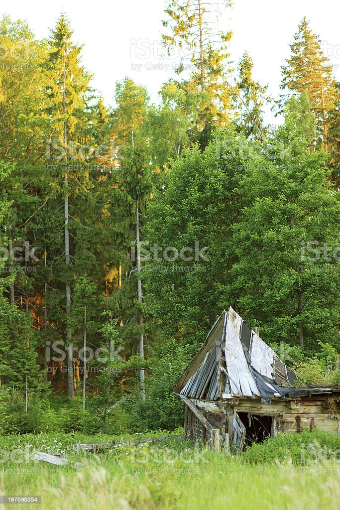 Old abandoned house in the forest royalty-free stock photo