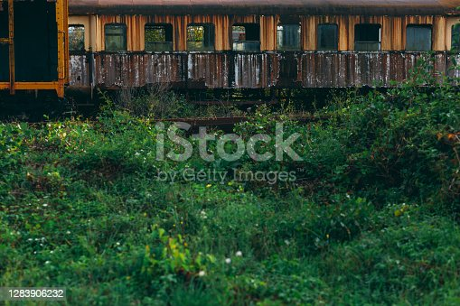 Old abandoned yellow train in scrap yard, forgotten and overgrown with nature, rusty and with broken windows