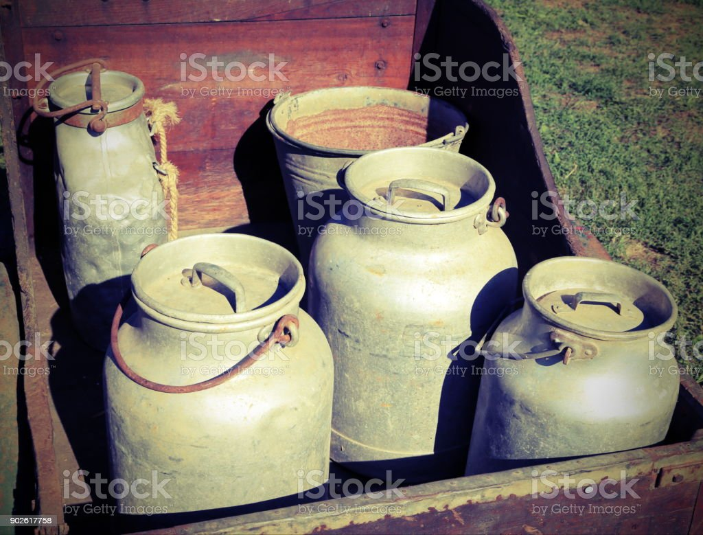 old aluminum milk cans  to transport of fresh milk in a wooden cart stock photo