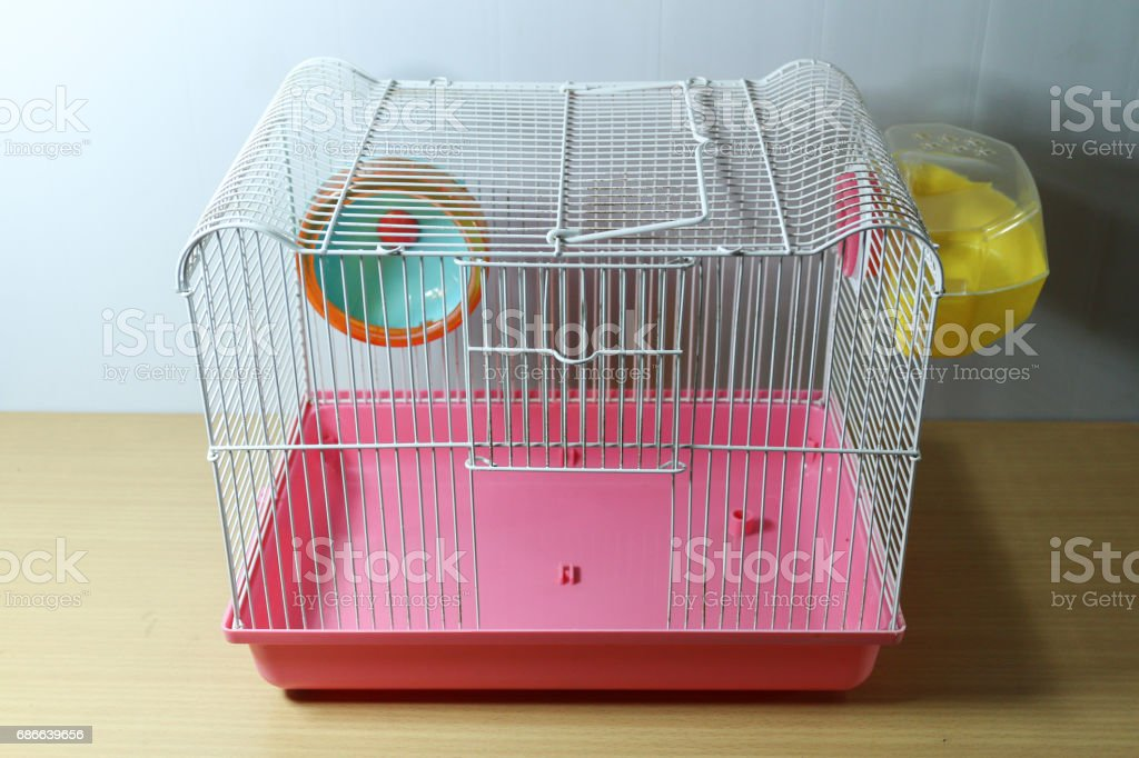 old and empty white and pink hamster cage on wood desk with hamster wheel and yellow hamster toilet Стоковые фото Стоковая фотография