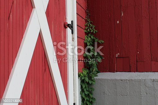 istock Old and new 1022213030