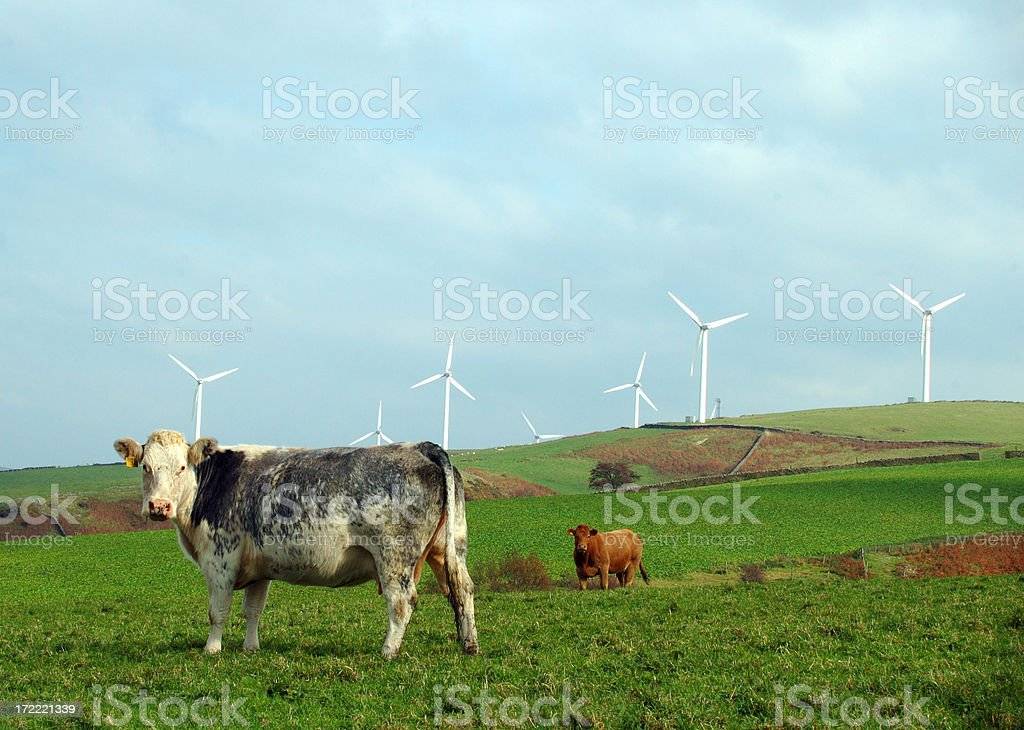 old and new royalty-free stock photo