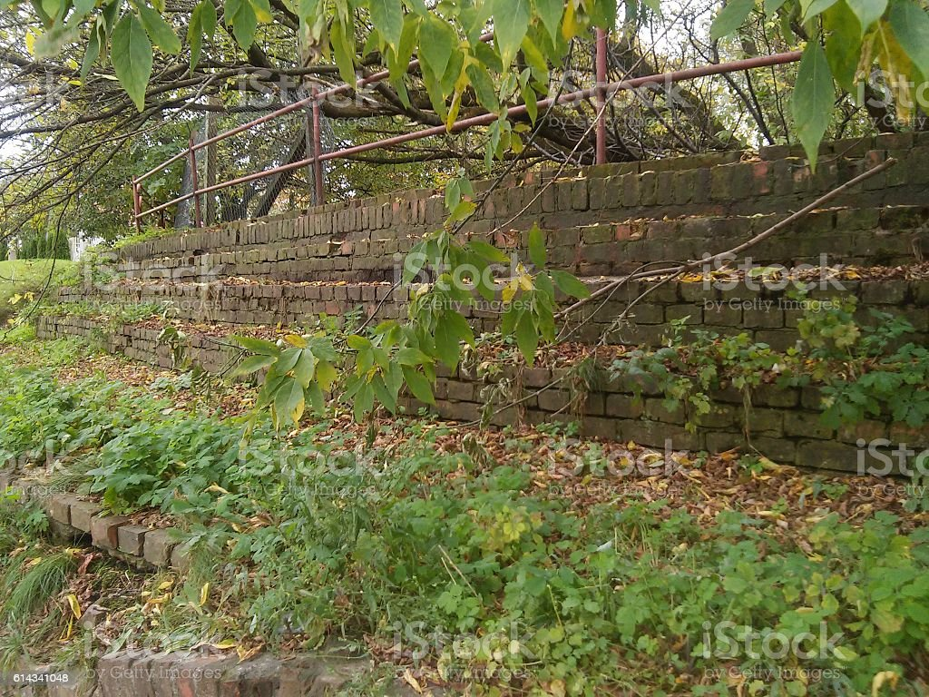 Old and overgrown stairs stock photo