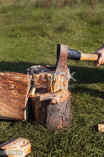 Old ax in a log
