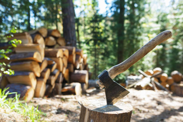 Old axe standing against a piled pieces of firewood stock photo