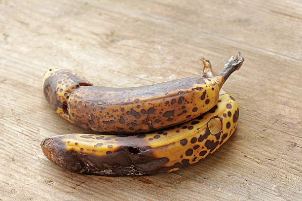 193 Old Moldy Bananas Stock Photos Pictures Royalty Free Images Istock