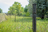 istock Old barbed wire fence along country road 1093249852
