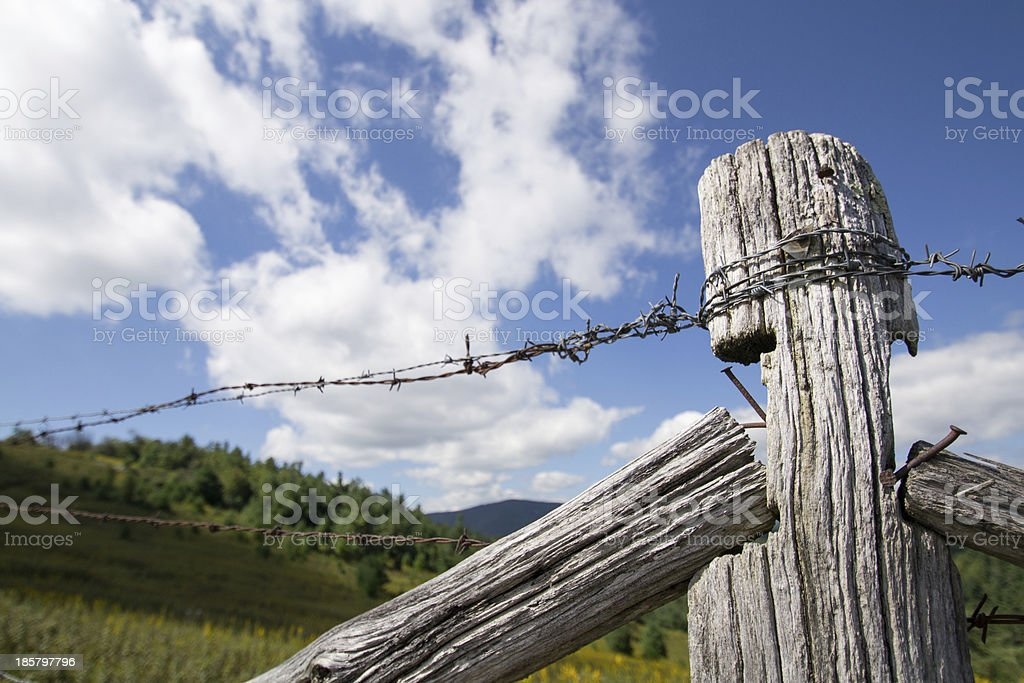 Old Barbed Wire Fence royalty-free stock photo
