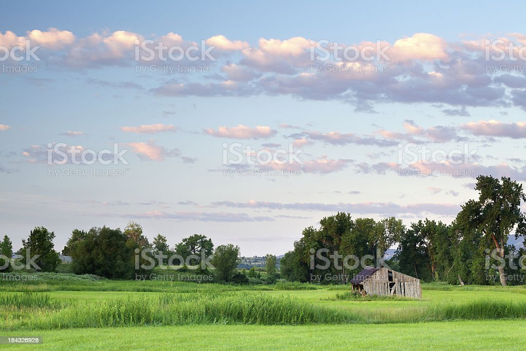Old Barn and Green Field stock photo