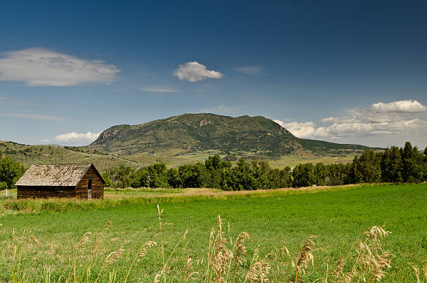 Old Barn and Mountain Landscape Old rundown barn on green grassy filed with mountains in background. This is in the middle of the a bright sunny day in the summer at Steamboat Springs Colorado. The mountain in the background is Elk Mountain or Sleeping Giant. steamboat springs stock pictures, royalty-free photos & images
