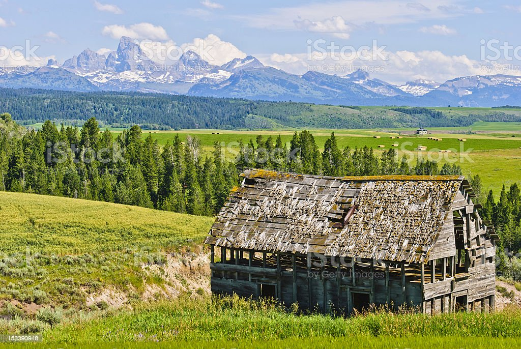 Old Barn and the Tetons stock photo