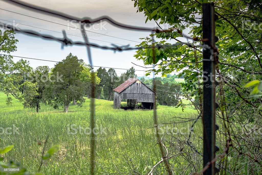 Old barn in a meadow stock photo