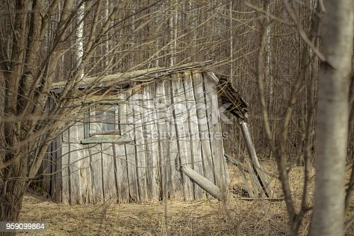 The old wood barn next to a forest in a semi-abandoned village. Shooting in early springtime