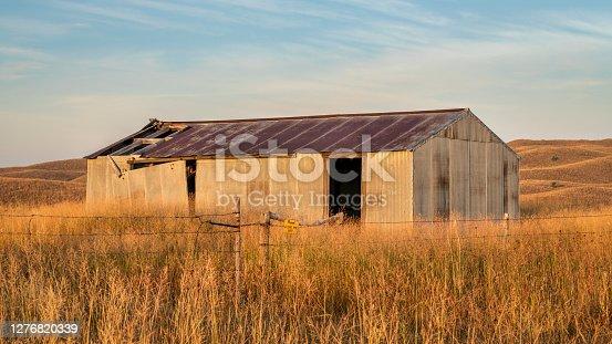 old metal barn in Nebraska Sandhills - early fall scenery at Nebraska National Forest