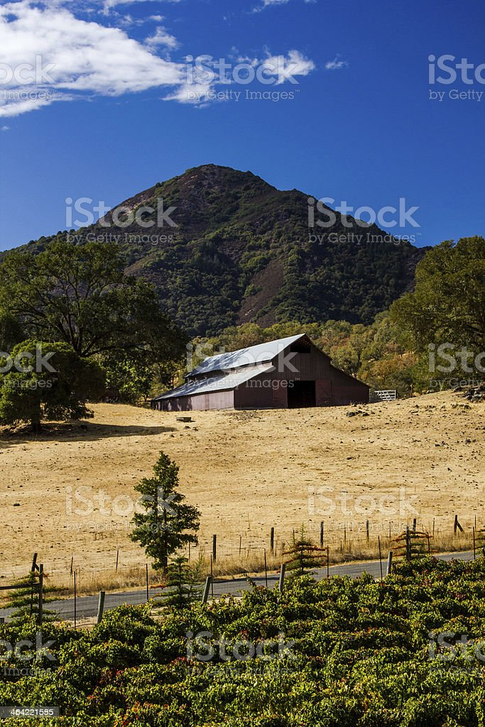 Old barn overlooking a road and grape vines royalty-free stock photo