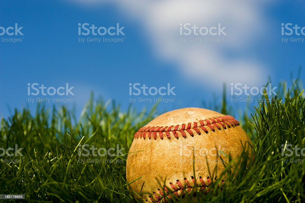 Old Baseball in grass stock photo