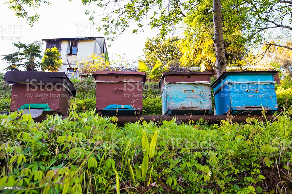 old beehives stock photo