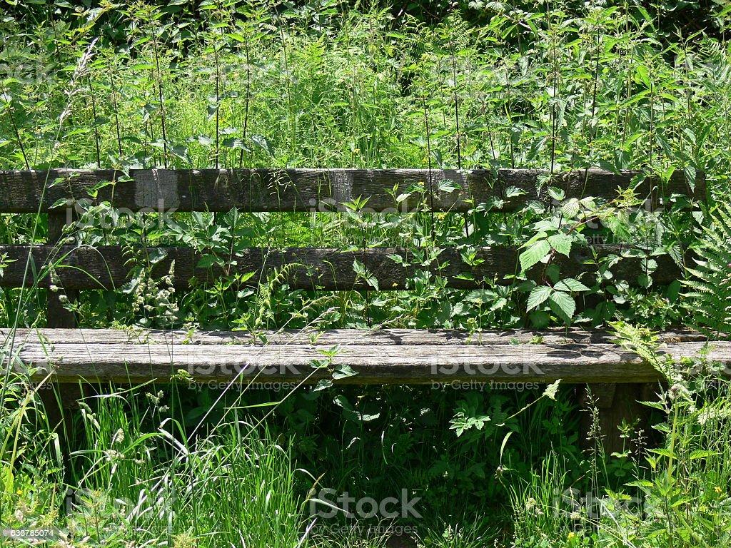 Alte Sitzbank in einer Wiese 2 stock photo