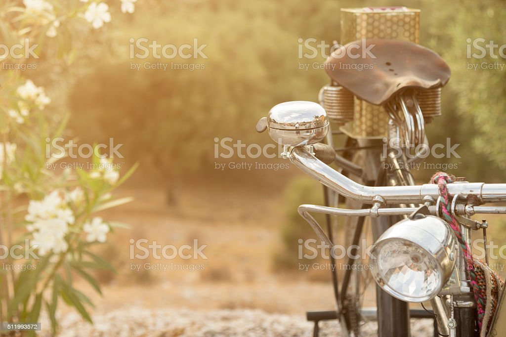 Old bicycle and flowers stock photo