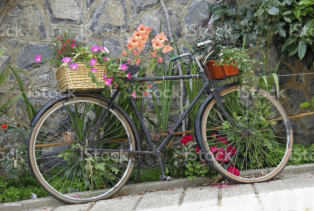 Old bicycle decorated with flowers royalty-free stock photo