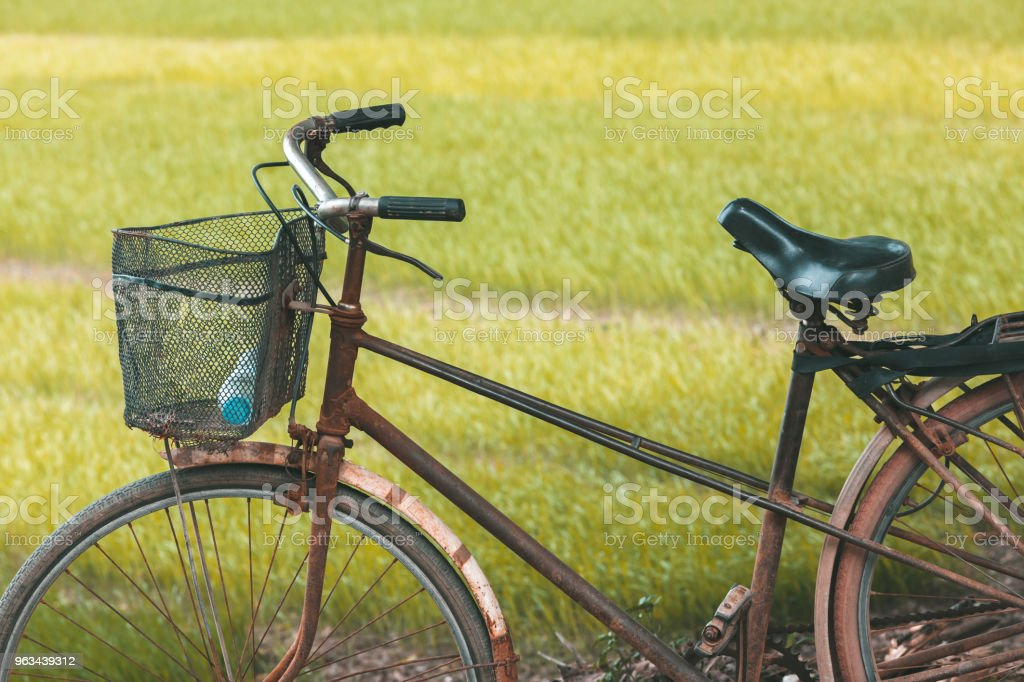 Old bicycle in front of a rice field in Vietnam - Zbiór zdjęć royalty-free (Bicykl)
