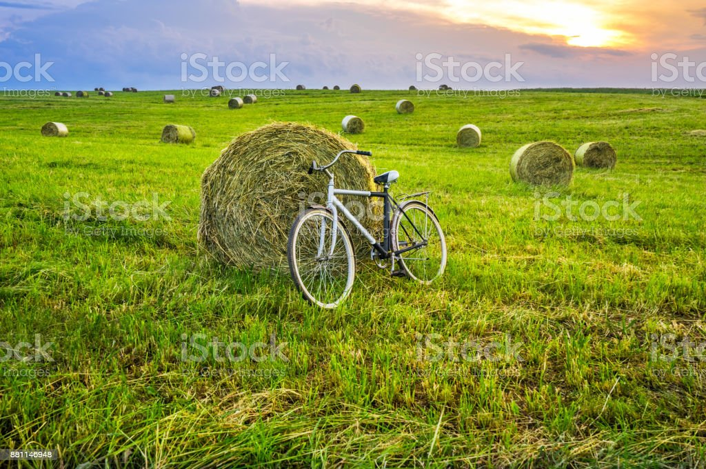 Old bicycle on a field stock photo