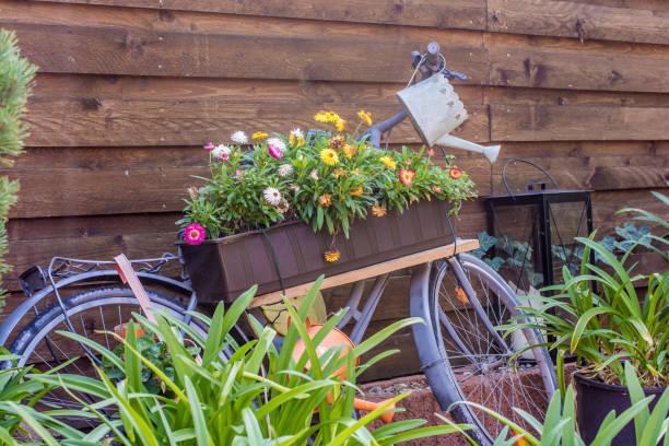 Altes Fahrrad als ein Blumenständer für dekorative Zwecke umgebaut – Foto